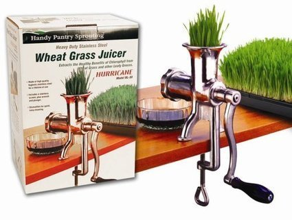 Best Wheat Grass Juicers Reviews | Home And Kitchen | Scoop.it