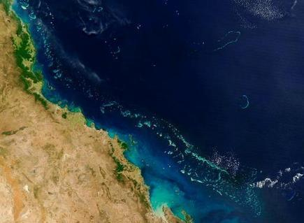 Time running out for Great Barrier Reef: scientists | Sustain Our Earth | Scoop.it