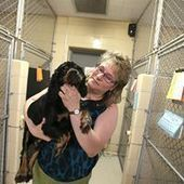Pet Sounds: Special music soothes dogs at the Erie County SPCA  - The Buffalo News | Educational Technology | Scoop.it