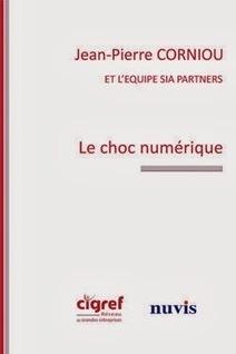 Architecture Organisationnelle: Entreprises Numériques et Homéostasie Digitale | Digital Homeostasis | Scoop.it