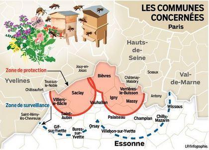 La loque américaine menace les ruches de l'Essonne | EntomoNews | Scoop.it
