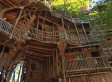 WATCH: Inside One Of The World's Largest Treehouse | READ WHAT I READ | Scoop.it