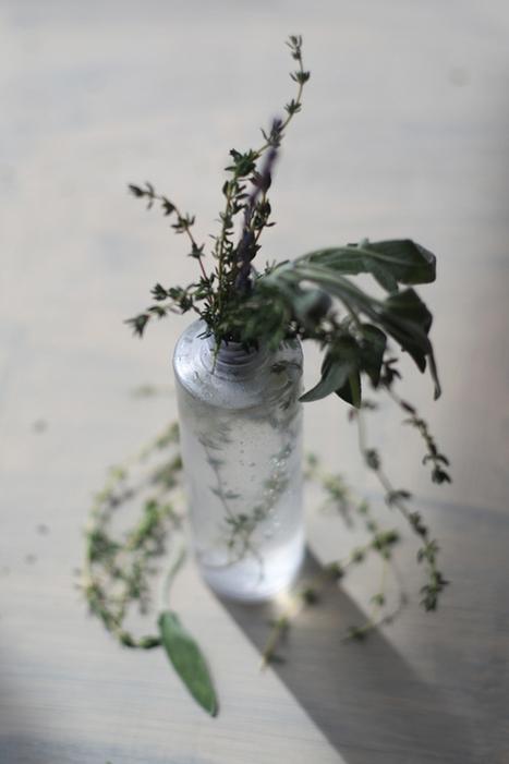DIY All-Natural Bug Spray - Free People Blog | Opiniões interessantes | Scoop.it