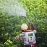 Mutation breeding vs. GMOs