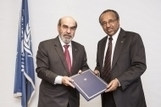 FAO partners with the International Federation of Red Cross and Red Crescent to improve food security and resilience | FAO | Resilience | Scoop.it