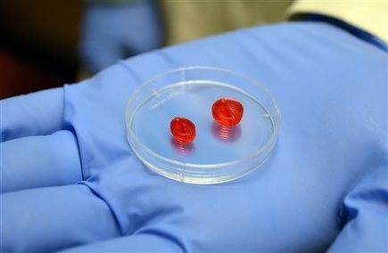 Scientists Try To Build Heart With 3-D Printer | SynBioFromLeukipposInstitute | Scoop.it