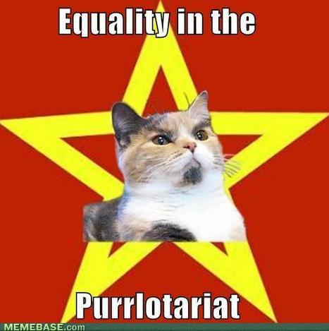 Lenin Cat: The Revolution's Underbelly | meme, lol & existensialism | Scoop.it