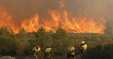 L'important feu de forêt près de Marseille «presque maîtrisé» ce mardi (photos) | Risques majeurs et gestion des sinistres | Scoop.it