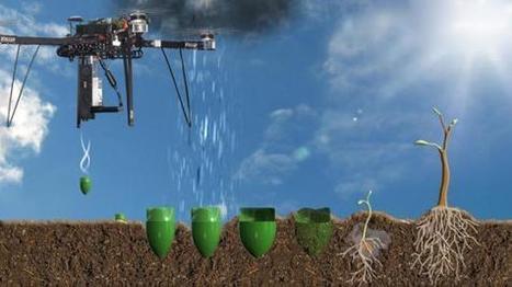 Startup vai usar drones para semear 1 bilhão de árvores por ano e reflorestar o planeta   - Blog da Redação   Complexidade   Scoop.it