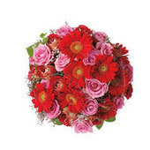 Order online flower Bunch and Bouquet in India | Flower bouquet delivery India | Same day Delivery available in many cities in India. | Gifts Delivery in India | Scoop.it