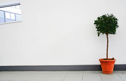 La Simplicidad: El Arte de Simplificar lo Complicado   Mateconectad@s   Scoop.it