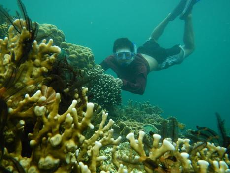 Pulau Hrapan | Paket wisata | mogong | Scoop.it