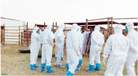 Two new coronavirus cases detected - Saudi Gazette | MERS-CoV | Scoop.it