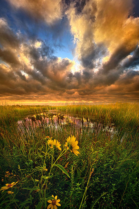 Just Moving SLow byPhil Koch | My Photo | Scoop.it