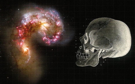 The Mind, Body and Brain Connection | Science Fiction Golden | Scoop.it