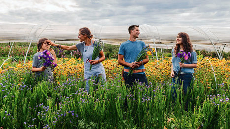 The Next Generation Of Farmer Florists | Eco-Friendly Lifestyle | Scoop.it