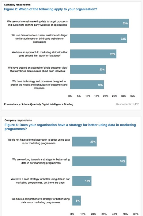 20% of marketers have created an actionable 'single customer view' - Econsultancy   Designing  service   Scoop.it