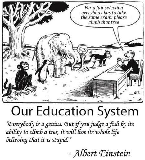 Our Education in a nutshell   EduTech   Scoop.it