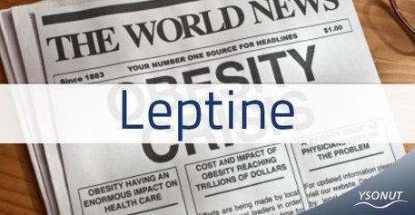 Leptine: ouvre-t-elle une nouvelle recherche sur l'obésité?   Nutrition équilibrée - blog Ysonut   Alimentation et Santé, Trust on Science !   Scoop.it
