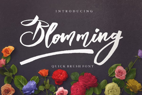 Blomming Handwritten Brush Font for FREE ($15 Value) | Software Giveaway and Deals | Scoop.it