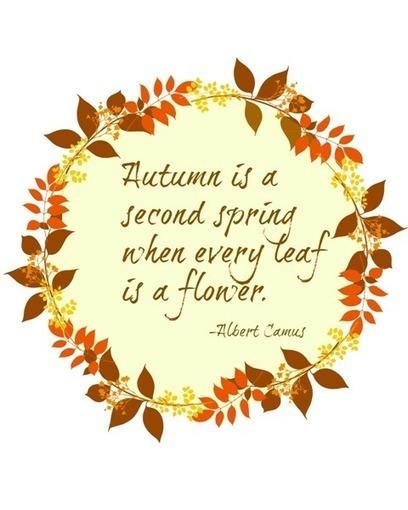 Hello Autumn- Time for Special Flower Arrangements   Fashion, Beauty & Flowers   Scoop.it
