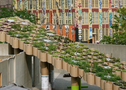 Urban Agriculture - The Grass Is Greener On The Other Side | Urban Agriculture | PowerHouse Growers | Food related production. | Scoop.it
