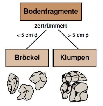 Des mottes Klumpen et Broeckel : ce n'est pas pareil | krumel | Scoop.it