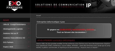 [TENDANCE] Le point sur le développement de logiciel sur Lyon | Prestataires et services aux entreprises | Scoop.it