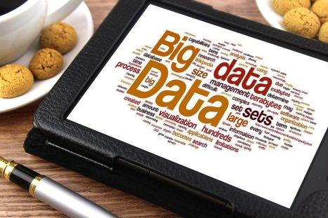 L'exploitation du Big Data : l'avenir des stratégies commerciales des éditeurs ?   l'Edition et le défi du Numérique   Scoop.it