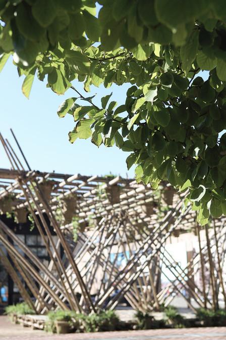 Rising Canes, el pabellón de bambú de Penda en Beijing Design ... - Plataforma Arquitectura | retail and design | Scoop.it
