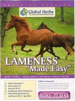 Veterinary Advice on Back Pain in Horses | Back Pain in Horses | Scoop.it