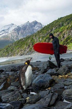 Tweet from @GenteEnFotos   Surf para principiantes   Scoop.it