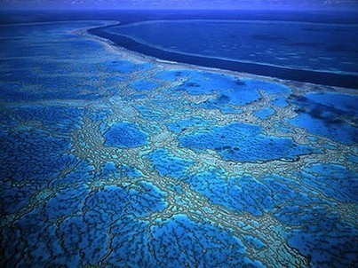 La Grande Barrière de Corail, en Australie | The Blog's Revue by OlivierSC | Scoop.it