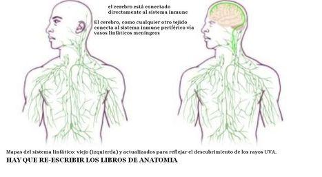 A CAMBIAR LOS LIBROS DE MEDICINA | Novedades Cientificas y Médicas | Scoop.it