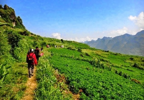 Ha Giang Tours - Ha Giang Trekking Tours: The Mystical Mountains of Northern Vietnam 4 Days | Vietnam Holiday Packages | Scoop.it