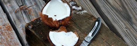 Les 1001 usages de la noix de coco   Régime Paléo   Scoop.it