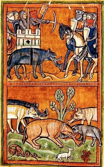 Bestiari medievali - Leggende e fantasie popolari sugli animali, interpretati dalle scritture | Storia delle Immagini | Capire l'arte | Scoop.it