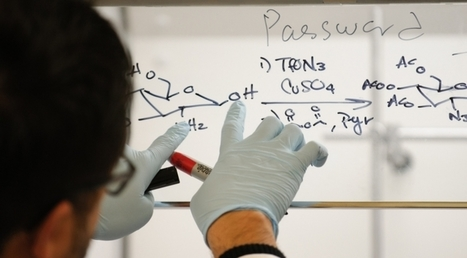STEM Retention Program to Reach Hundreds More | UANews | CALS in the News | Scoop.it