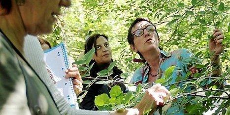 Hérault : visite à l'école des plantes de Candillargues | Economie Responsable et Consommation Collaborative | Scoop.it