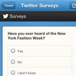 Twitter Surveys, un outil d'avenir pour le marketing ?   Réseaux sociaux, Marketing et Recrutement   stratégie marketing des PME   Ressources humaines 2.0   Scoop.it