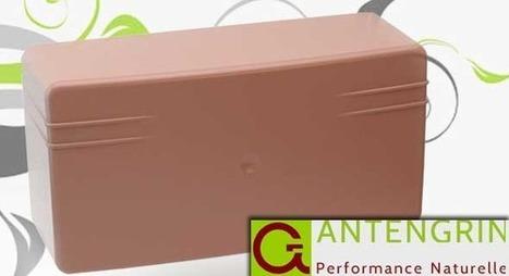 [Test] Antengrin : l'antenne TNT écologique et discrète + concours | Immobilier | Scoop.it