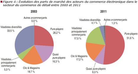 e-Commerce : la position délicate des pure players en France | Veille e-commerce, marketing digital | Scoop.it