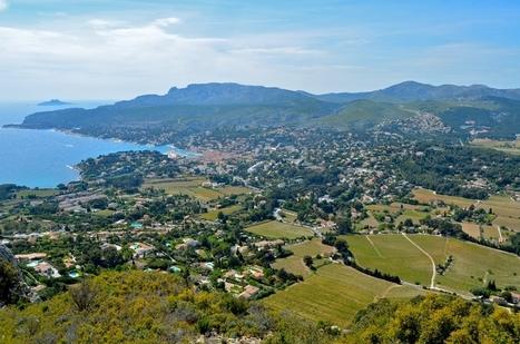80 ans de Cassis : cépages et pratiques en débat   Le vin quotidien   Scoop.it