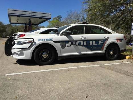 Tallahassee Police to answer all calls in pairs | Police Problems and Policy | Scoop.it