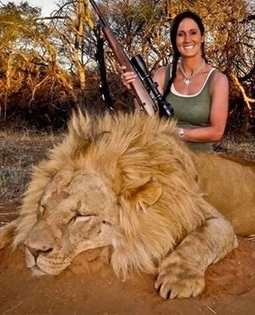 78 000 want US lion hunter banned from SA | Conservation | Scoop.it