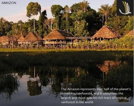 Peru Amazon Tours   GoTOPeru   Scoop.it