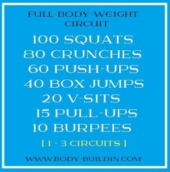 Full-Body-Weight Circuit -- How To Burn Fat At Home | Useful Fitness Articles | Scoop.it