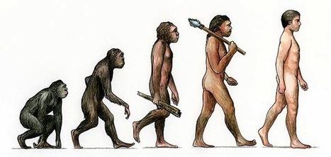 Взглянем на теорию Дарвина сегодня | Биология | Scoop.it