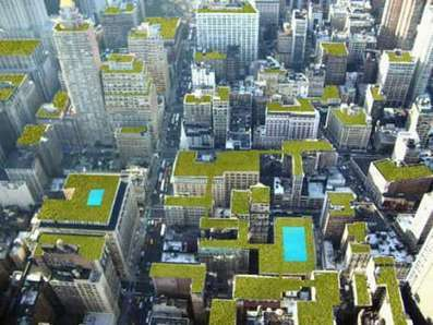 New NYC Planning Proposal Would Make 1,200 Acres Available For Rooftop Farming | Sustainable Urban Agriculture | Scoop.it