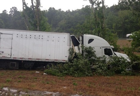 Truck full of sharks crashes on I-95 in Florida | DiverSync | Scoop.it